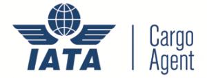 IATA network logo
